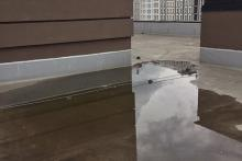 уборка после дождя